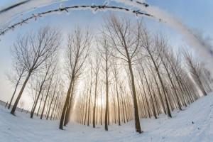Tél Nagybajomnál